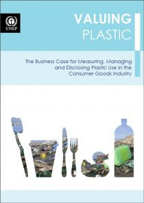 Valuing Plastic