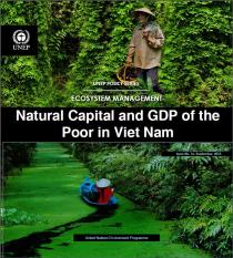 Natural Capital and GDP of the Poor in Viet Nam