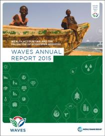 WAVES Annual Report 2015
