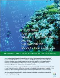 The Global Partnership on Wealth Accounting and the Valuation of Ecosystem Services