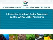 Introduction to Natural Capital Accounting and the WAVES Global Partnership