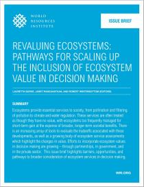 Revaluing Ecosystems