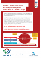 Natural Capital Accounting: Focusing on Energy and Adaptation to Climate Change