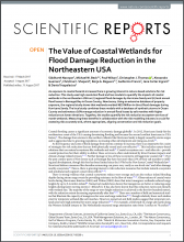 The Value of Coastal Wetlands for Flood Damage Reduction in the Northeastern USA