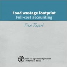 Food wastage footprint: Full-cost accounting