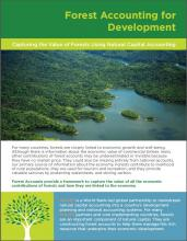 Capturing the Value of Forests Using Natural Capital Accounting