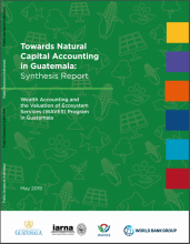 Towards Natural Capital Accounting in Guatemala : Synthesis Report