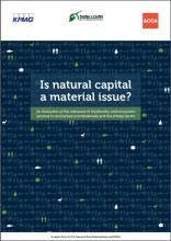 Is natural capital a material issue? An evaluation of the relevance of biodiversity and ecosystem services to accountancy professionals and the private sector