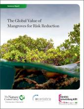 The Global Value of Mangroves for Risk Reduction: Summary Report