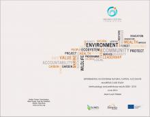 Experimental Ecosystem Natural Capital Accounts - Mauritius Case Study