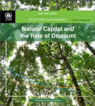 Natural Capital and the Rate of Discount