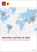 Natural Capital at Risk: The top 100 externalities of business