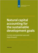 Natural capital accounting for the sustainable development goals: Current and potential uses and steps forward