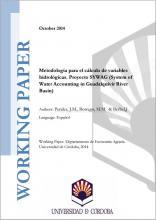 Metodología para el cálculo de variables hidrológicas. Proyecto SYWAG (System of Water Accounting in Guadalquivir River Basin)