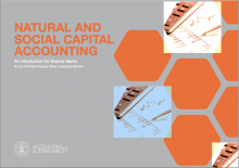 Natural and social capital accounting: an introduction for finance teams
