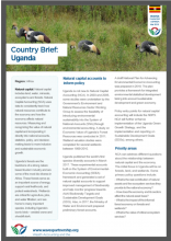 Country Brief: Uganda