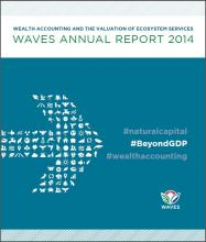 WAVES Annual Report 2014