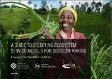 A Guide to Selecting Ecosystem Service Models for Decision-Making: Lessons from Sub-Saharan Africa