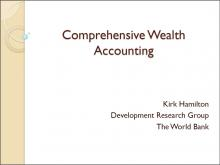 Comprehensive Wealth Accounting