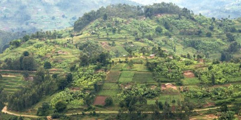 Rwanda launches first Natural Capital Accounts to inform economic planning