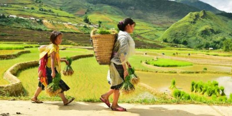 Policy Forum on Natural Capital Accounting for Better Decision Making