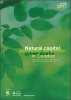 Natural Capital Accounts for Public Green Space in London
