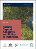 Natural Capital Accounts and Policy in Indonesia