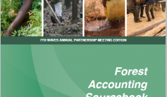 Forest Accounting Sourcebook