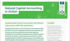 Natural Capital Accounting in Action: Guatemala