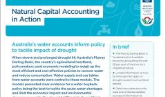 Natural Capital Accounting in Action: Australia's water accounts inform policy to tackle impact of drought
