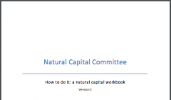 How to do it: A natural capital workbook