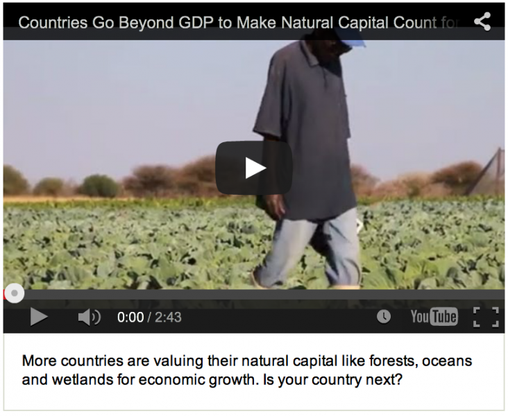 Countries Go Beyond GDP to Make Natural Capital Count for Development Video
