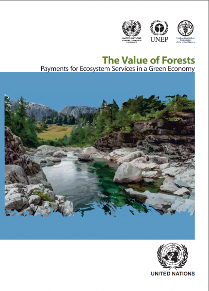 The Value of Forests: Payments for Ecosystem Services in a Green Economy