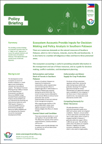 Policy Briefing: Ecosystem Accounts Provide Inputs for Decisions-Making and Policy Analysis in Southern Palawan
