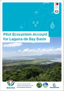 Pilot Ecosystem Account for Laguna de Bay Basin