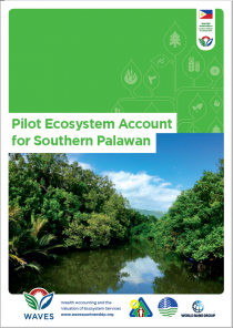 Pilot Ecosystem Account for Southern Palawan