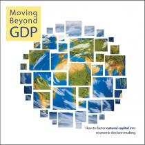 Moving Beyond GDP: How to Factor Natural Capital into Economic Decision Making