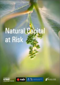 Natural Capital at Risk
