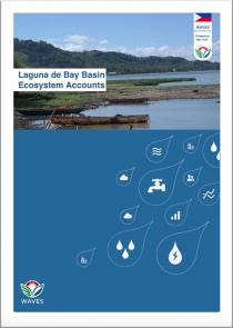 Laguna de Bay Basin Ecosystem Accounts