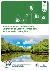 Mangrove Forest Inventory and Estimation of Carbon Storage and Sedimentation in Pagbilao