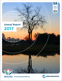 WAVES Annual Report 2017
