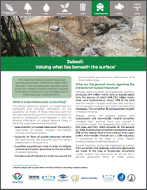 Subsoil: Valuing what lies beneath the surface