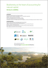 Biodiversity at the Heart of Accounting for Natural Capital: the Key to Credibility