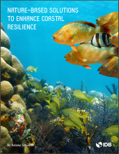 Nature-based Solutions to Enhance Coastal Resilience