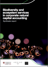 Biodiversity and ecosystem services in corporate natural capital accounting: Synthesis Report