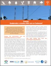 Energy: Guatemala - a country that runs on fuelwood