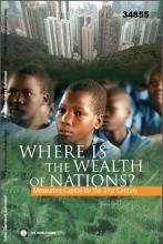 Where is the Wealth of Nations? Measuring Capital for the 21st Century