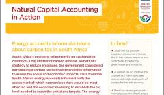 Natural Capital Accounting in Action: Energy accounts inform decisions about carbon tax in South Africa