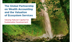 The Global Partnership for Wealth Accounting and the Valuation of Ecosystem Services: Valuing Natural Capital for Sustainable Development