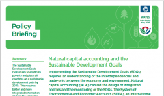 Natural capital accounting and the Sustainable Development Goals